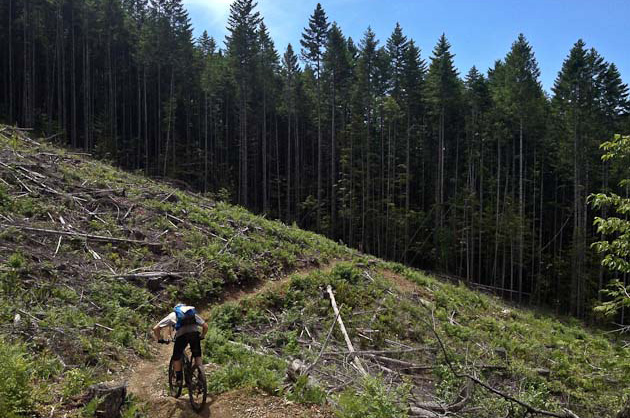 7)	While there was more climbing today than ever, there was still no shortage of sweet descents.