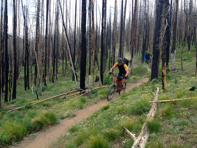Longtime pro, Eric Porter, and Smith Optics promotions manager, Gabe Schroder, threading the needle on some fine Sun Valley singletrack. And, yes, most of the trails up here are just like this. It's singletrack heaven up here.