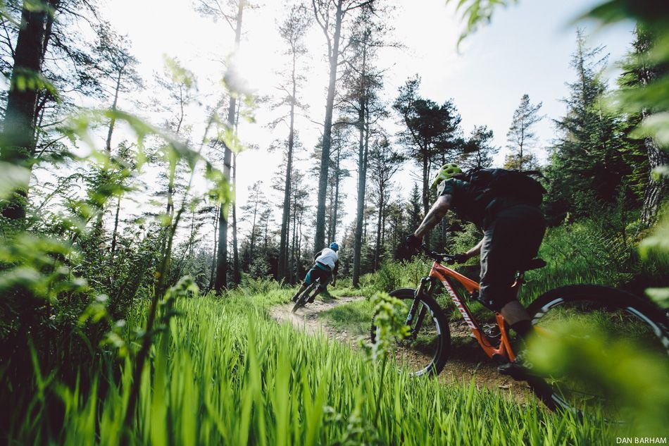 Scotland has more than its fair share of trails, having a guide like Andy McKenna really helps.