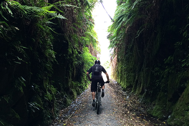 Through tunnels of trees, and tunnels cut of stone, the entire ride is a meditation on varieties of the color green… PHOTO: Mike Ferrentino