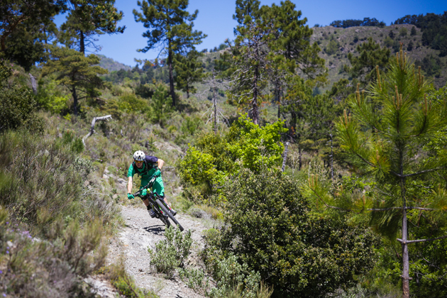 Reigning Enduro World Series Champion Jerome Clementz played an active role in the development and testing of the new Crossmax XL wheels. And he is not known for holding back while riding his bike.