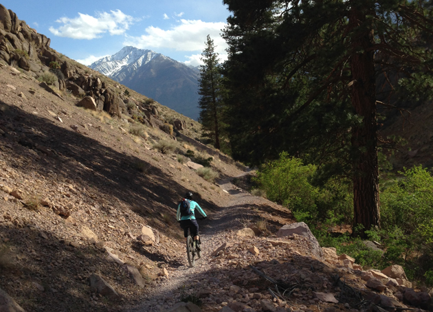 Don't forget to look up while riding near Mammoth Lakes. There are amazing views around every corner. | Photo: George Barthel