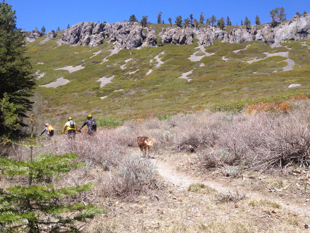 A good trail dog is the envy of every mountain-town local. | Photo: Nicole Formosa