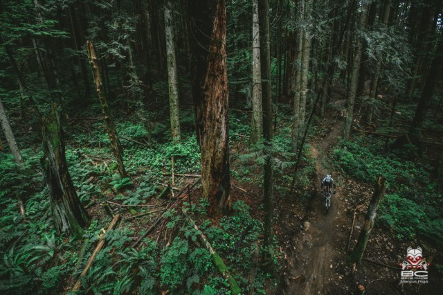Riding in North Shore always seems to have an ethereal feeling. | Photo by Margus Riga