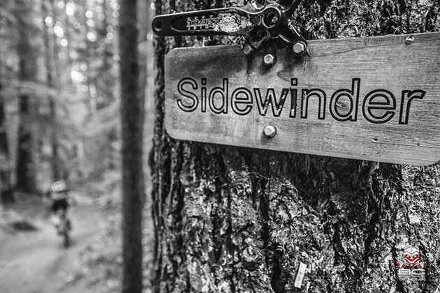 Trail signage - unique and mandatory | Photo by Dave Silver