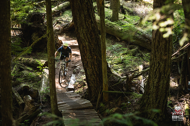 Dynamic trails are cherry picked for the BC Bike Race. | Photo by Dave Silver