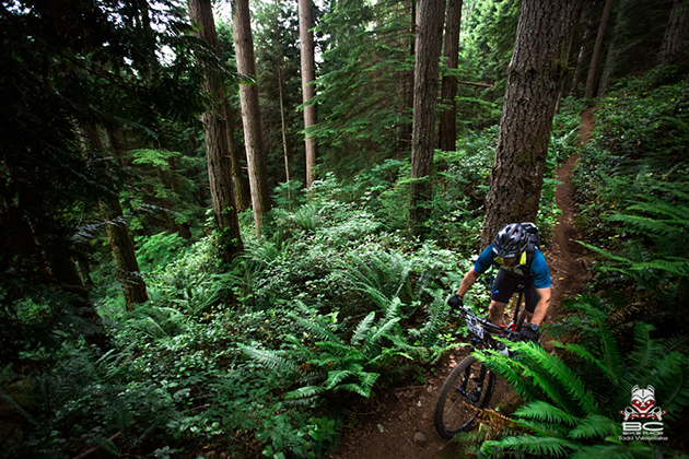 A thin brown  loamy line beckons tired riders onward. | Photo by RavenEyePhoto
