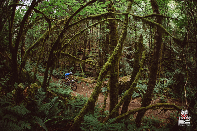 Rainforest electric green surrounds riders throughout the day. | Photo by Margus Riga