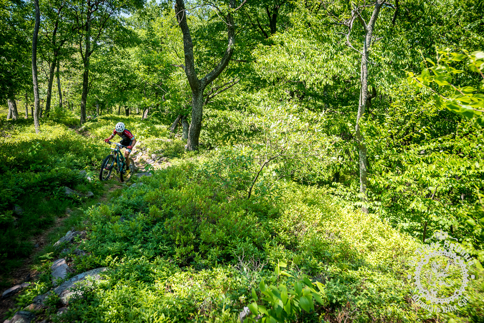 Tristan Uhl (Cometitive Cyclist) maneuvers through the rocks of Tussey Ridge.