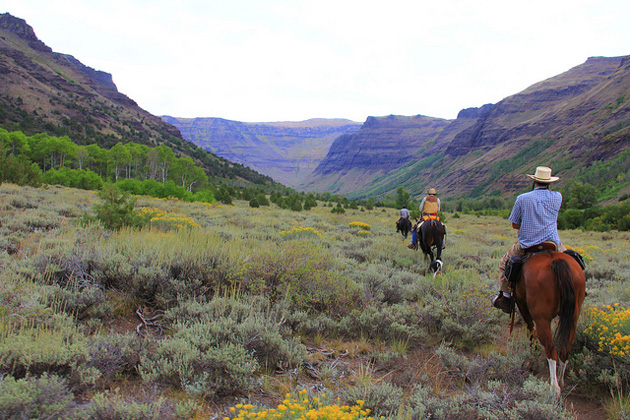 Riding your horse off trail in wilderness? Sure thing! Why not? That's good for the environment, right? Horseback riders enjoy some BLM-managed wilderness in Oregon. Must be awesome...