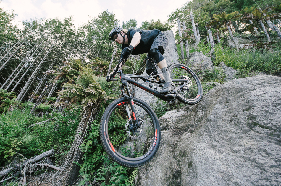 Specialized Stumpjumper 29