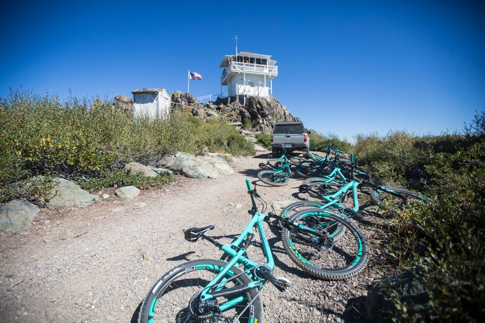 A gaggle of green at the Mills Peak fire lookout.