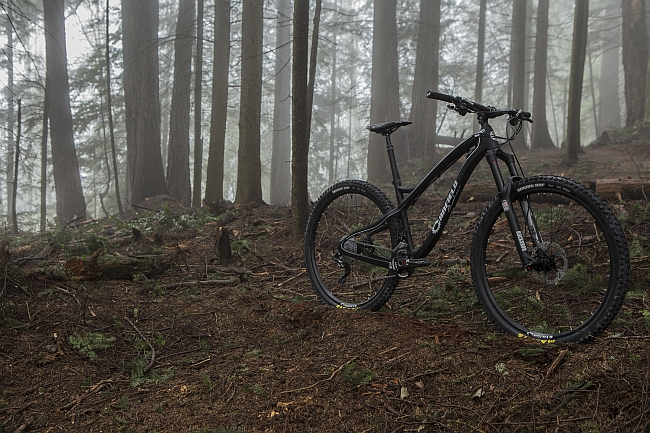 Canfield EPO Carbon