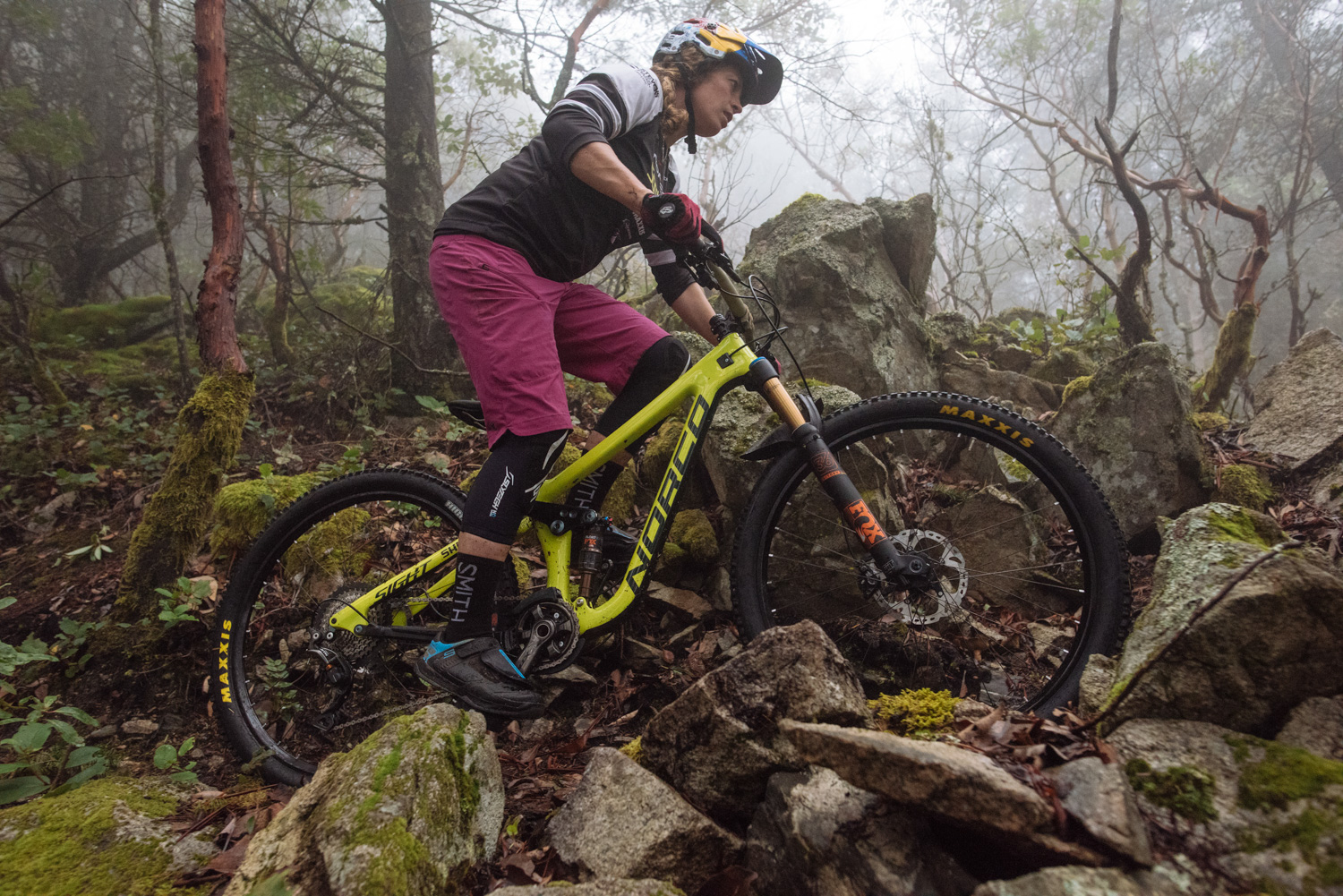 2017 Norco Sight